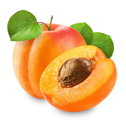 Huile de noyau d'abricot bio