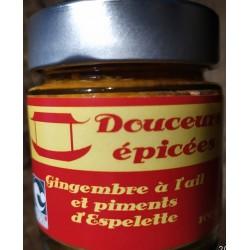 Douceurs épicées, Gingembre à l'ail et piment d'espelette (condiments)  en vente à Shanti Breizh, Trégunc Bretagne Finistère