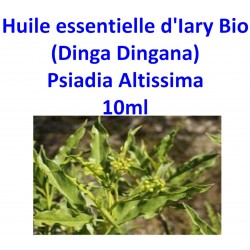 Huile Essentielle d' Iary (Dinga Dingana) Bio 10 ml