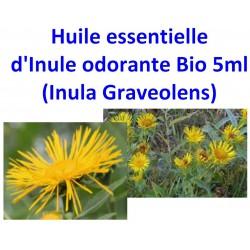 Huile Essentielle d' Inule Odorante Bio 5 ml