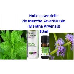 Huile Essentielle de Menthe Arvensis Bio 10 ml