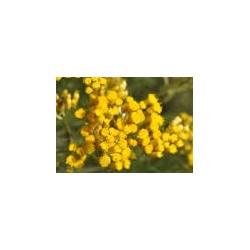 Eau Florale  d'Hélichryse...